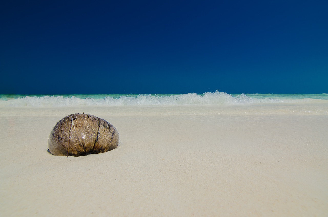 the-island-1348894_1280