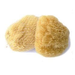 Přírodní mořská houba