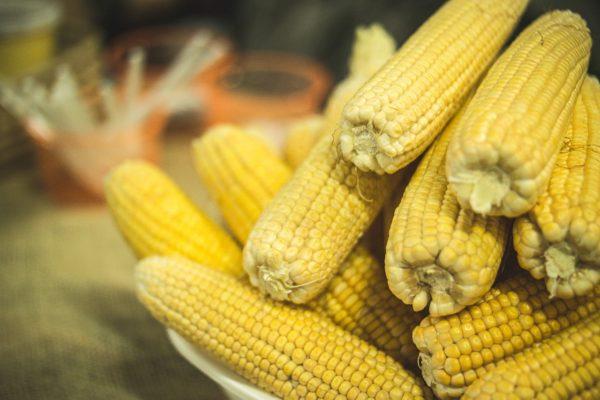 Kukuřice: univerzální zelenina