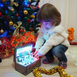 Jak vybrat vánoční stromeček