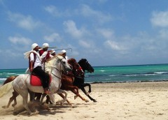 tunisia-979410_640