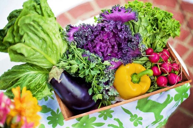Biopotraviny – volte poctivé potraviny bez chemie a konzervantů
