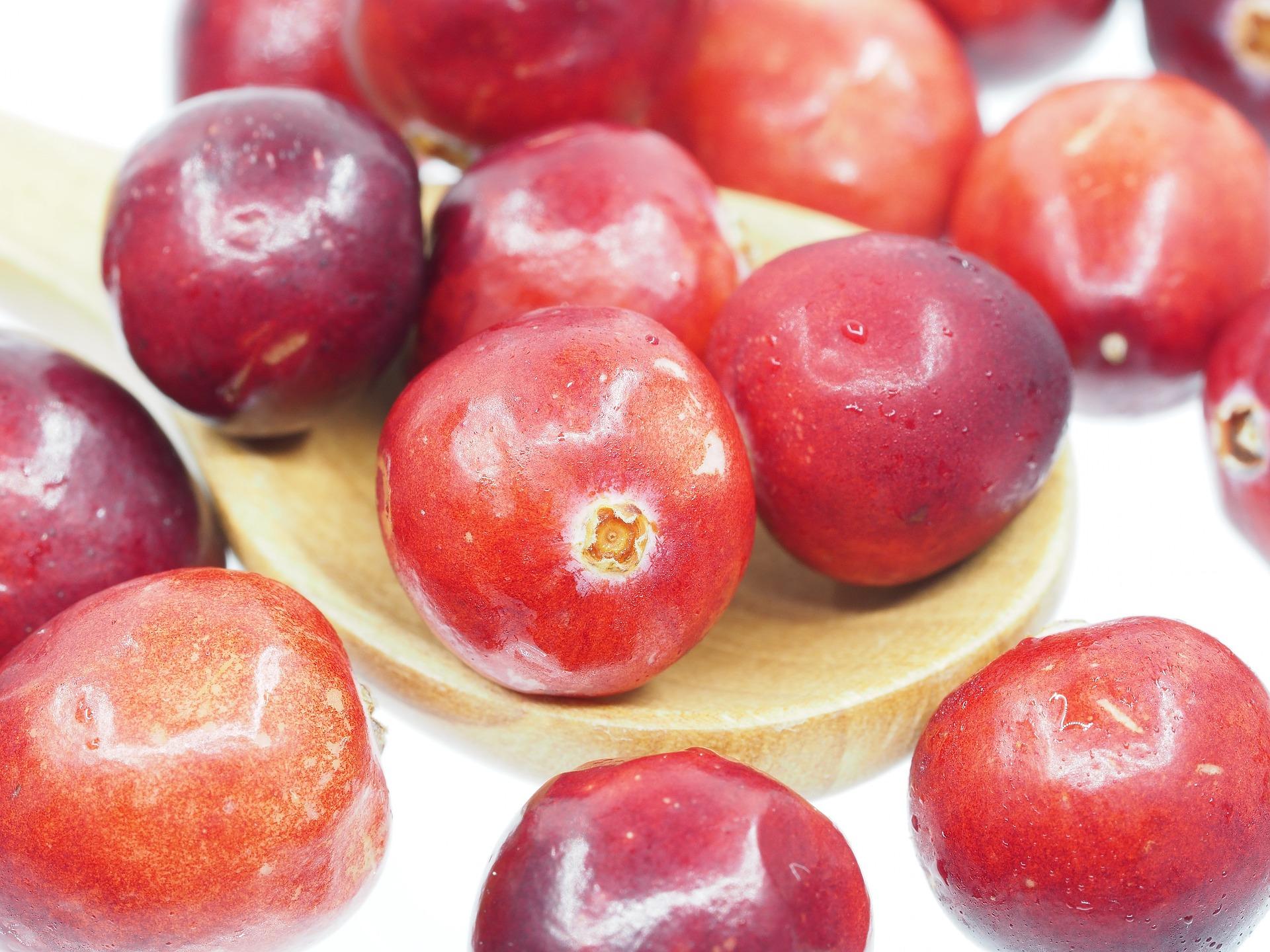 cranberry-1767424_1920