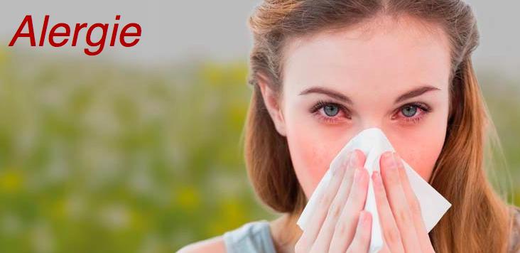 Co dělat, když vás trápí alergie?
